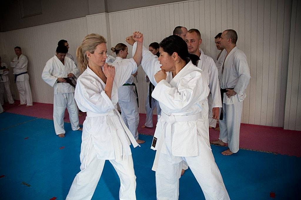 Beginning martial arts