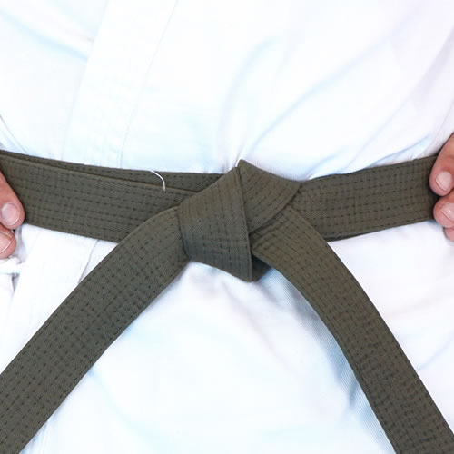 NSJJ Brown Belt