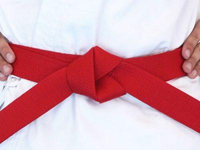 NSJJ - Red Belt
