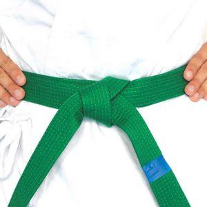 Northstar Ju Jitsu Blue Tip.