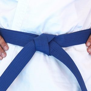 NSJJ Blue Belt