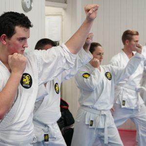 Ju Jitsu home work out