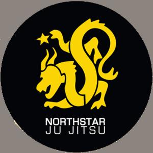 Northstar Martial Arts - Adults