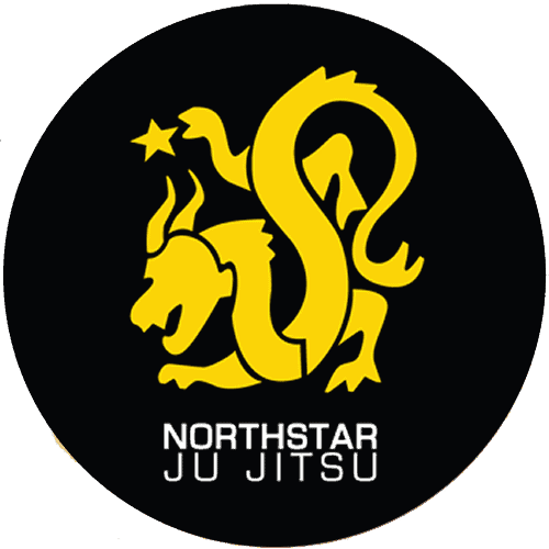 Northstar Martial Arts - Adults