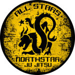 Northstar Martial Arts - All Stars ages 13-15