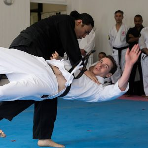 How much do you know about martial arts